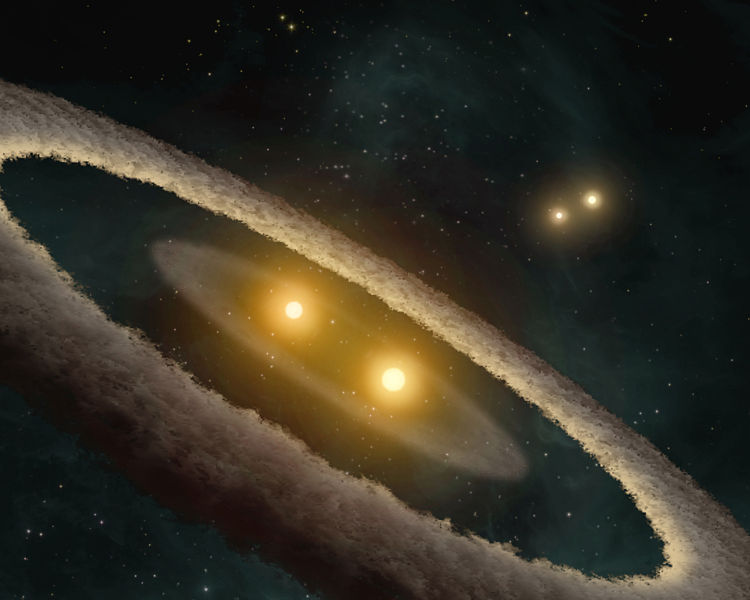 An artist's impression of the binary star system HD 98800 B, which is surrounded by a disc that may be in the process of forming planets. HD 98800 B is itself a member of a quadruple star system. NASA