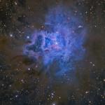 NGC7023HallasHDR900